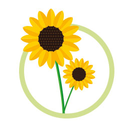 KSD_sunflower