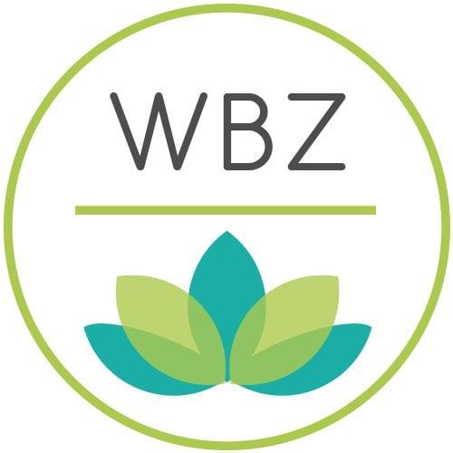 WellbeingZone - Logo variation