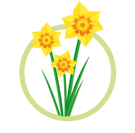 daffodil design only package