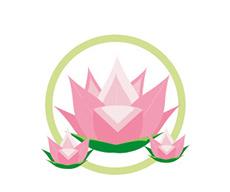Krishna Solanki Designs - Website Design package