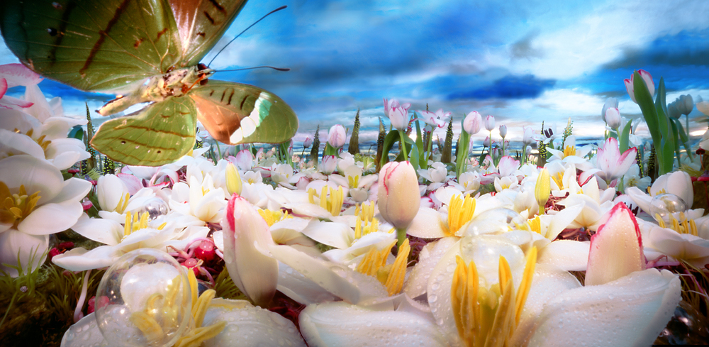 Lelievlinder