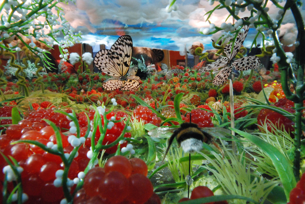vlinders.jpg