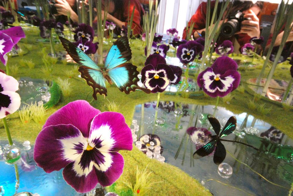 violen met vlinders.jpg