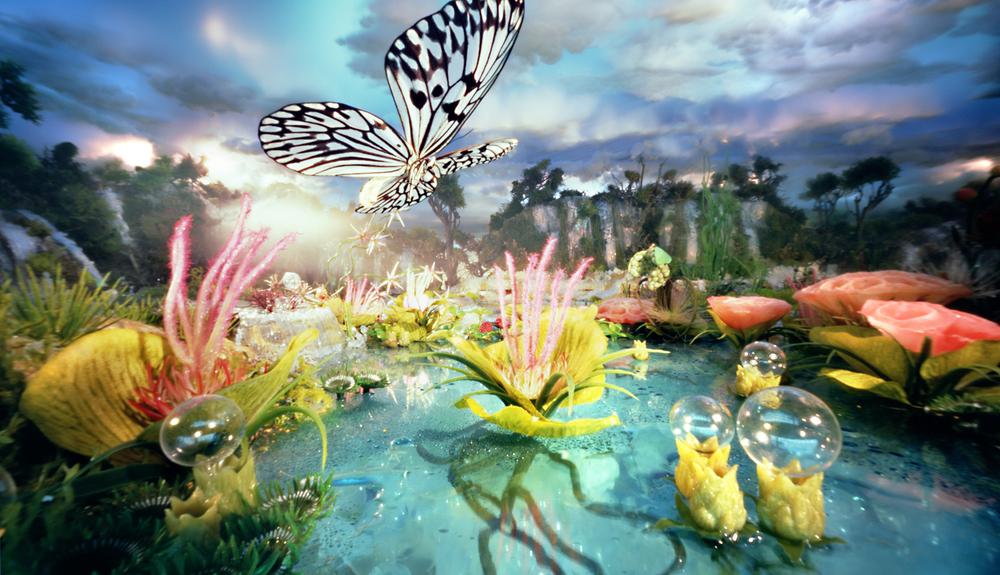 Lake Butterfly