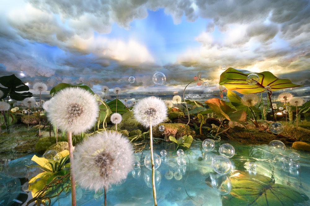 22. Dandelion lake