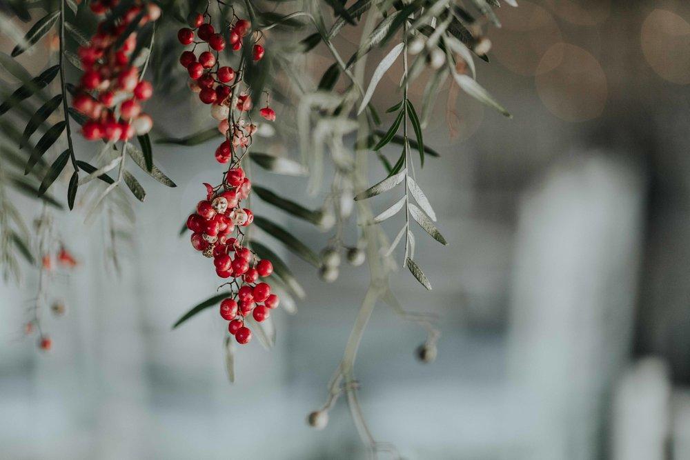 Kristi Smith Photography-7.jpg