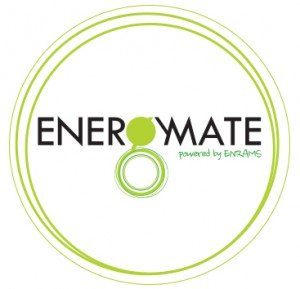 EnergyMate-logo1-300x289.jpg