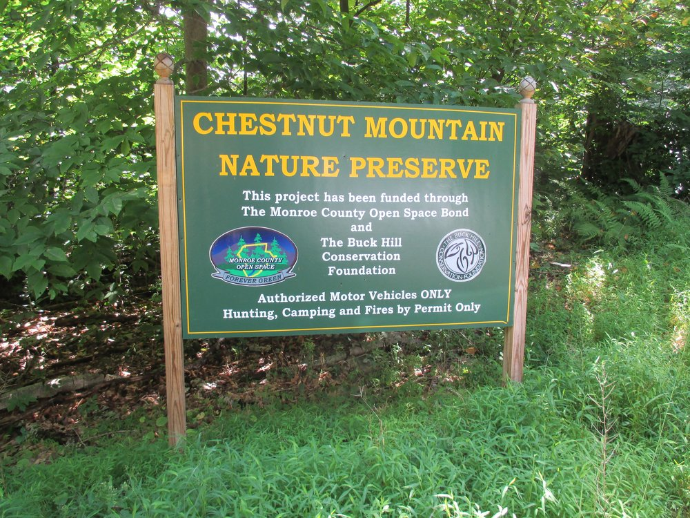 - Chestnut Mountain trails feature educational signs about forest regeneration. The 2.8 mile Blue Trail has a scenic vista at the overlook. The 1.2 mile Red Trail takes hikers shows characteristics of a healthy forest.
