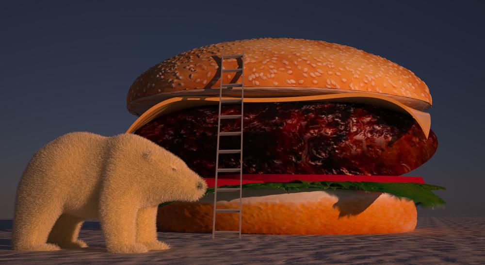 burger bear.jpg