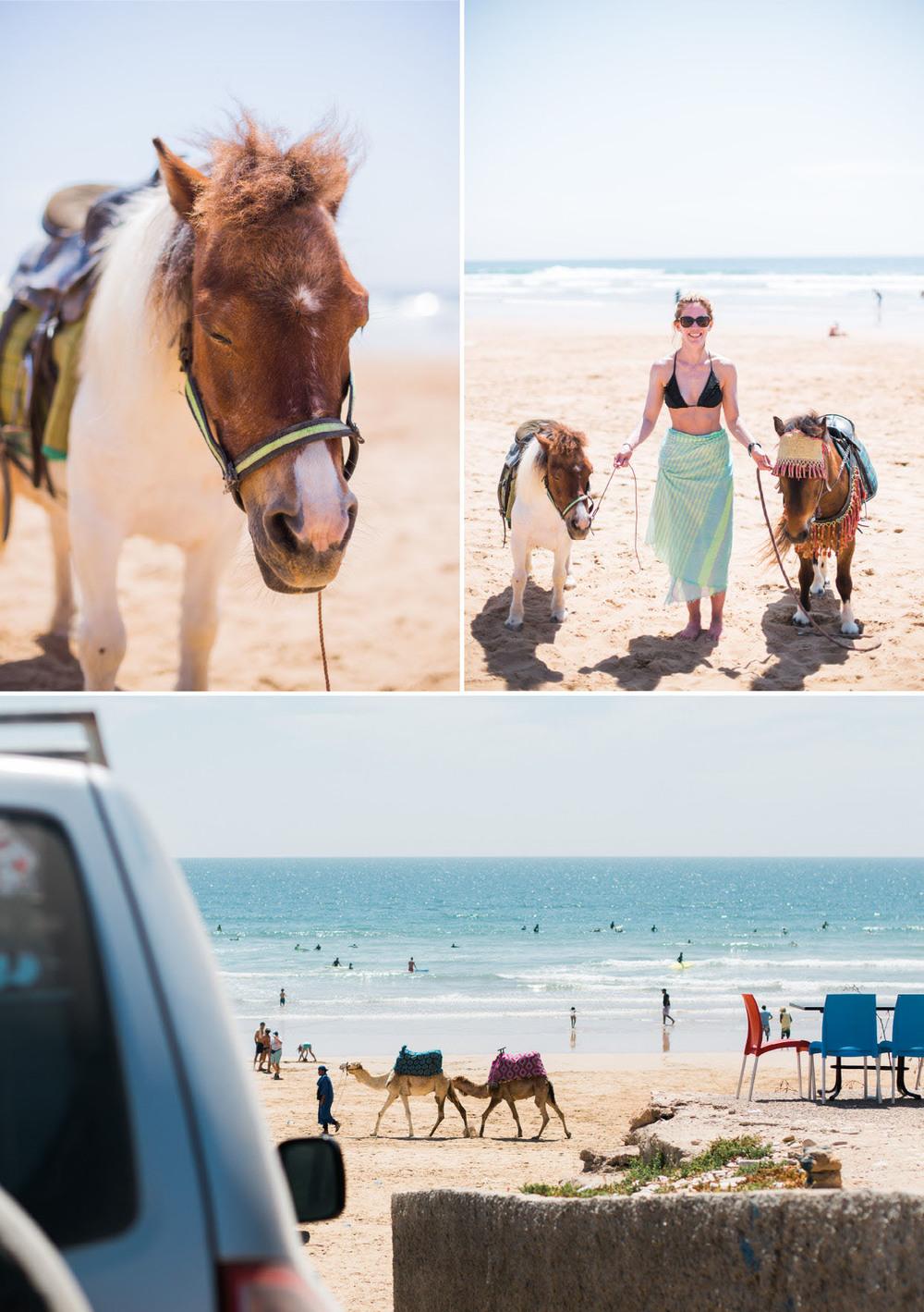Surf_Star_Morocco16.jpg