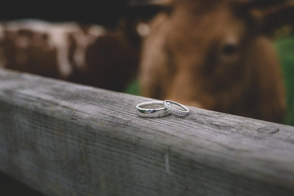 The Oak Barn Devon Wedding Photography-3.jpg