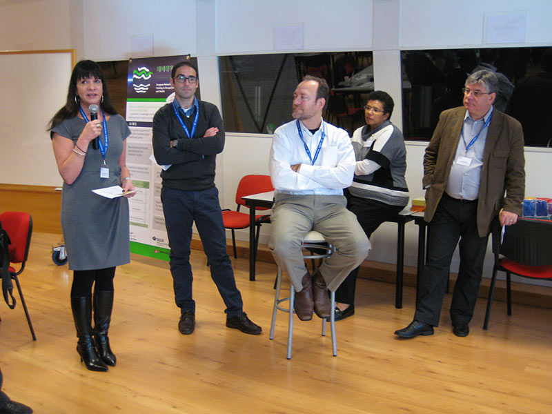 Sue boychuk representing canada at the international mainstreaming health and safety education in education systems conference. Turin, Italy 2012