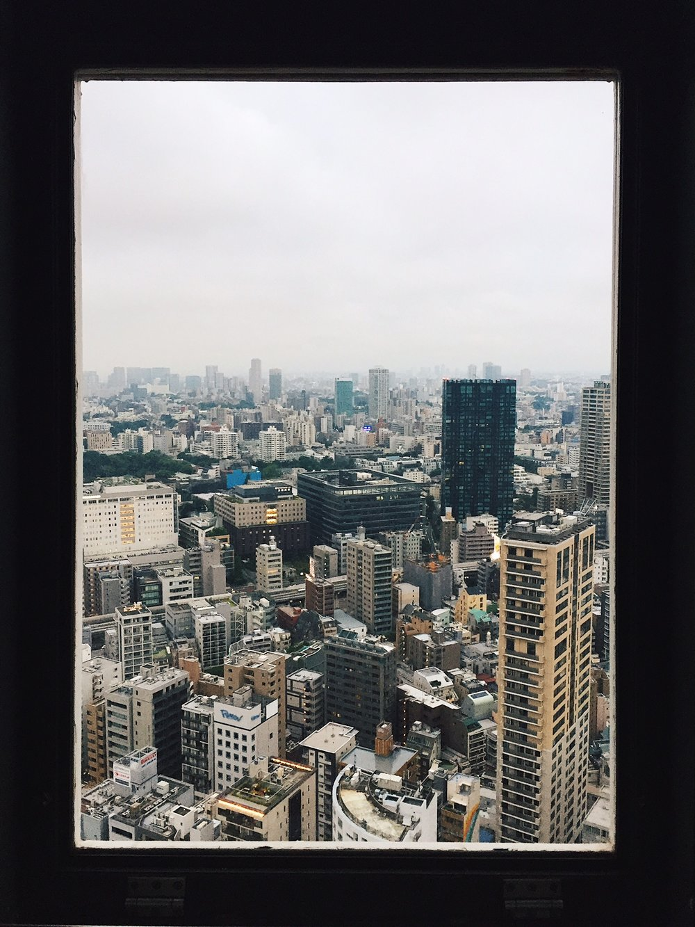view from the Tokyo Tower.