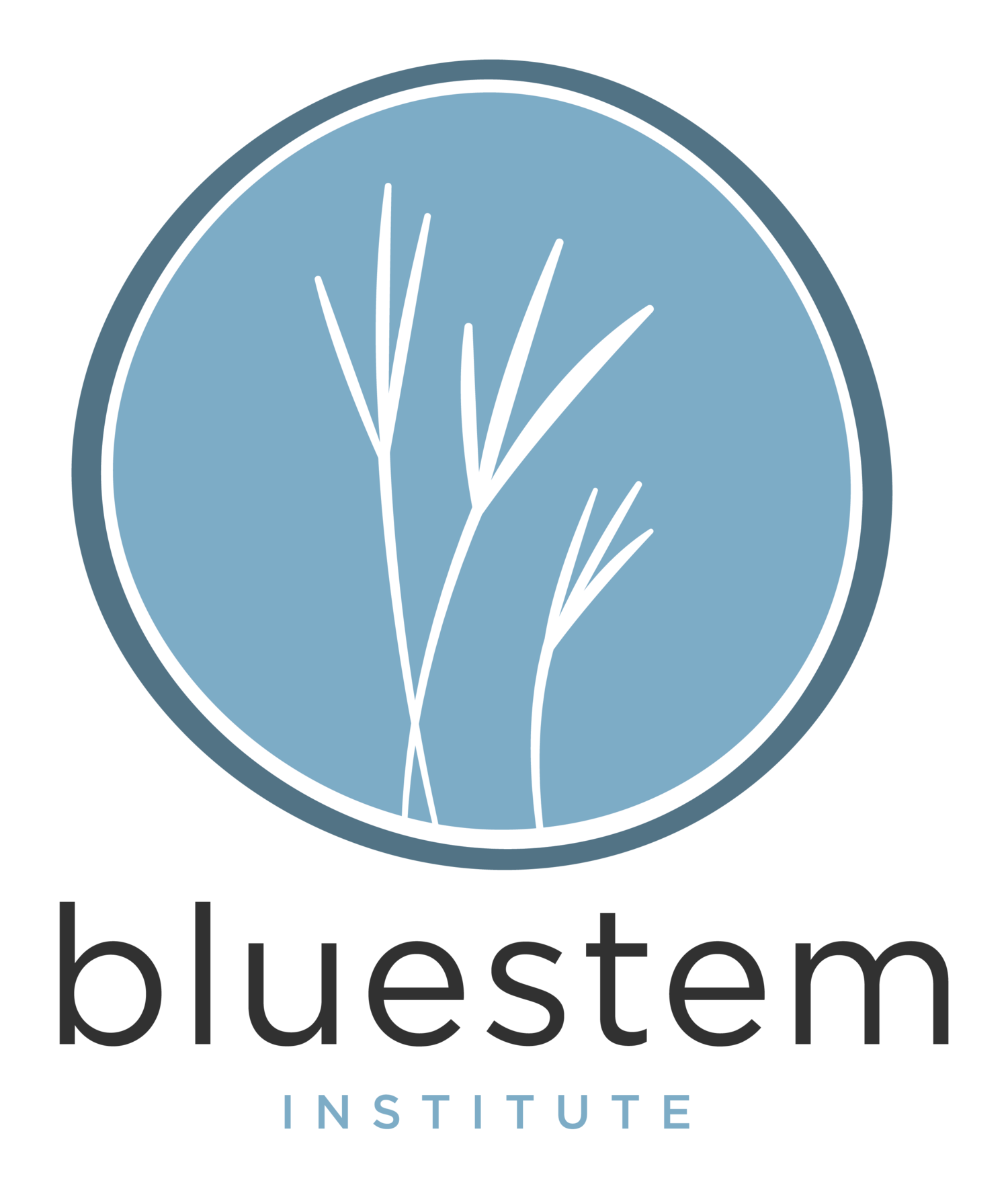 The Bluestem Institute at Ames High School