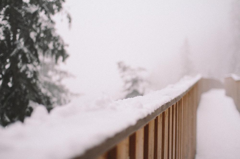 winter-16.jpg