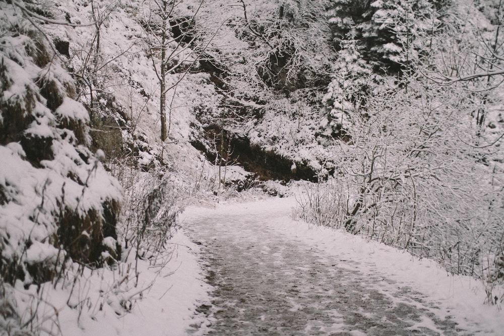 winter-24.jpg