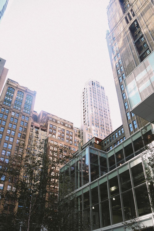 newyork-37.jpg