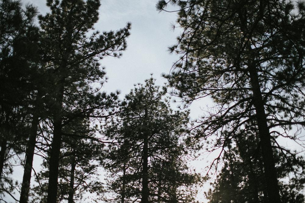 jakenkat-191.jpg