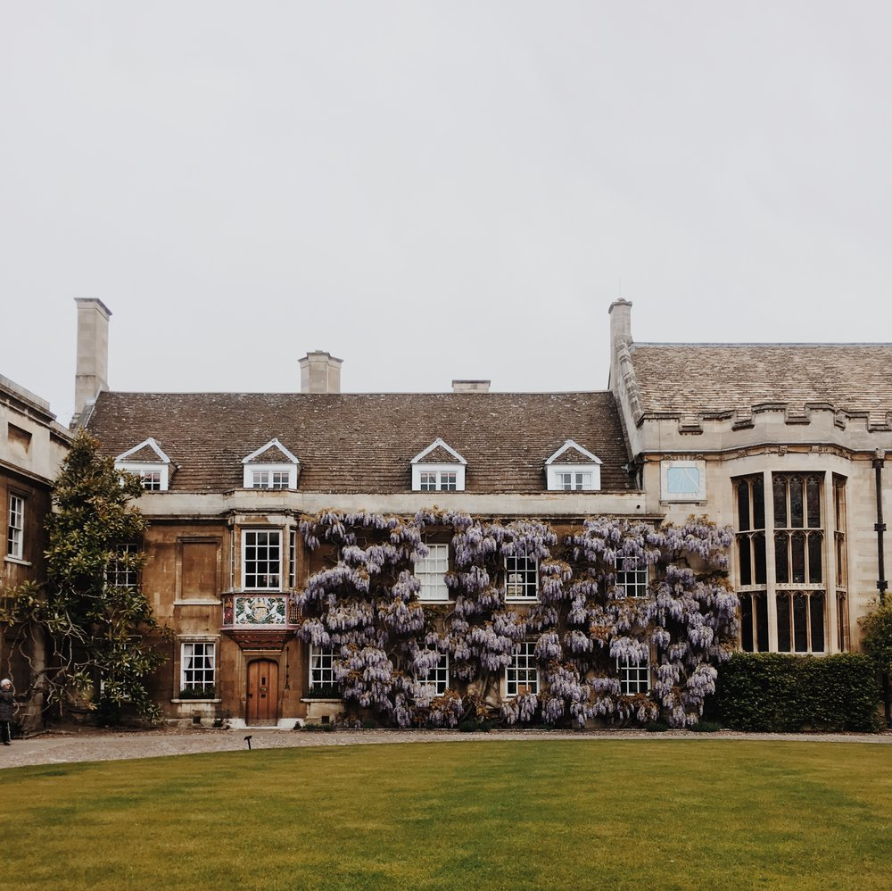 CELEBRATORY END-OF-TERM TRIP TO CAMBRIDGE