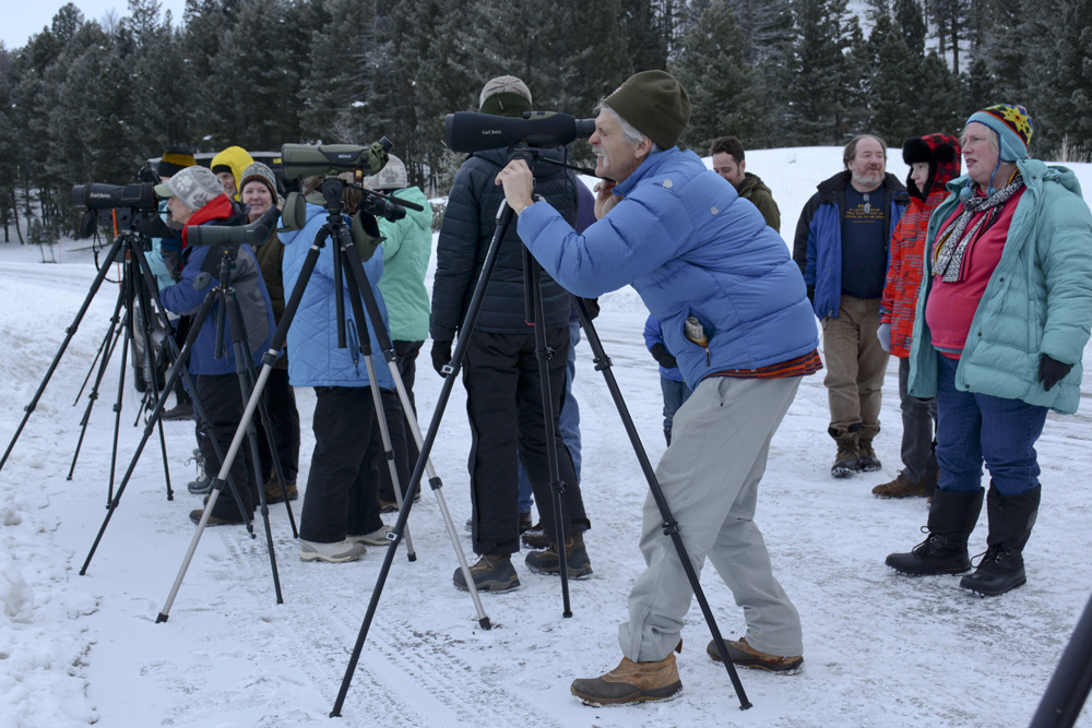 Yellowstone wolf biologist Doug Smith (foreground) helps wolf watchers find wolf packs in the Lamar Valley in January 2015.              Photo by Laura Lundquist