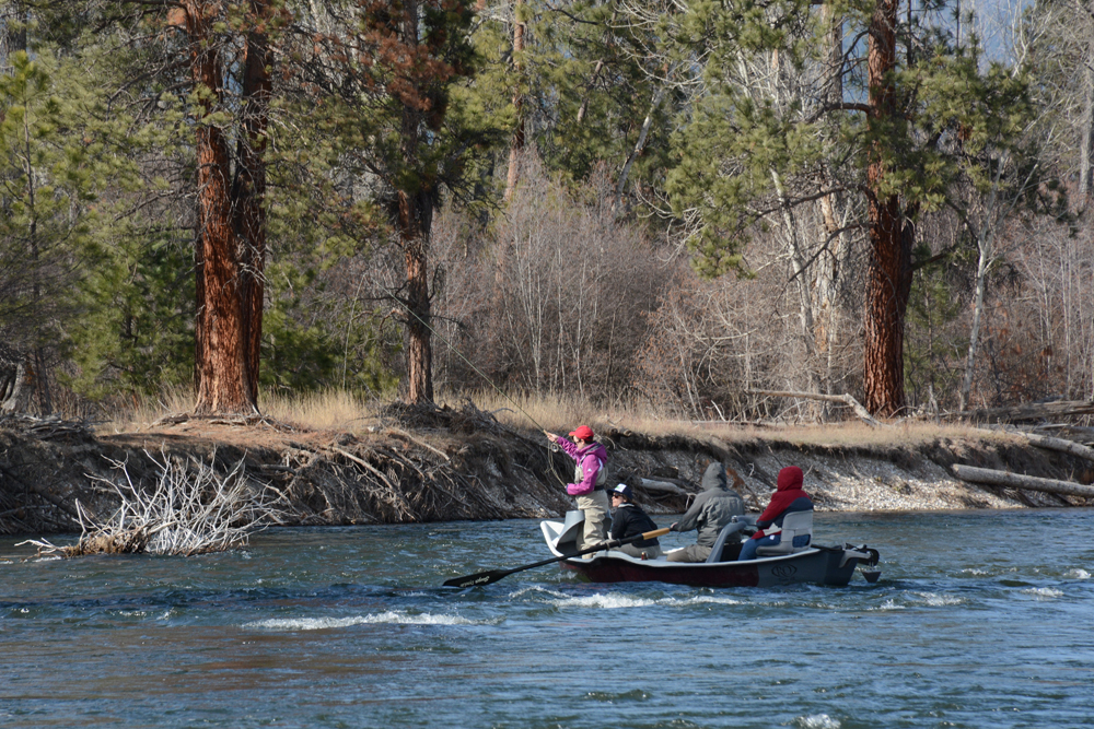 Anglers fish the banks of the BItterroot River in April 2016.                 Photo by Laura Lundquist