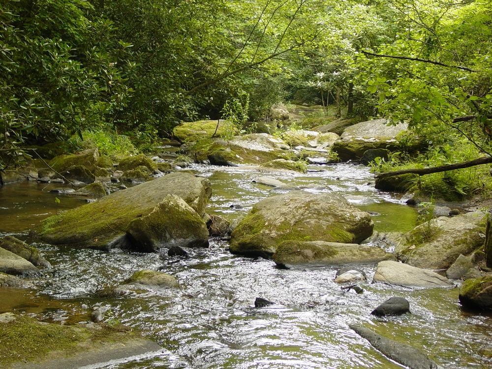 Fall Creek High Resolution Photos 07.13.02_002.jpg
