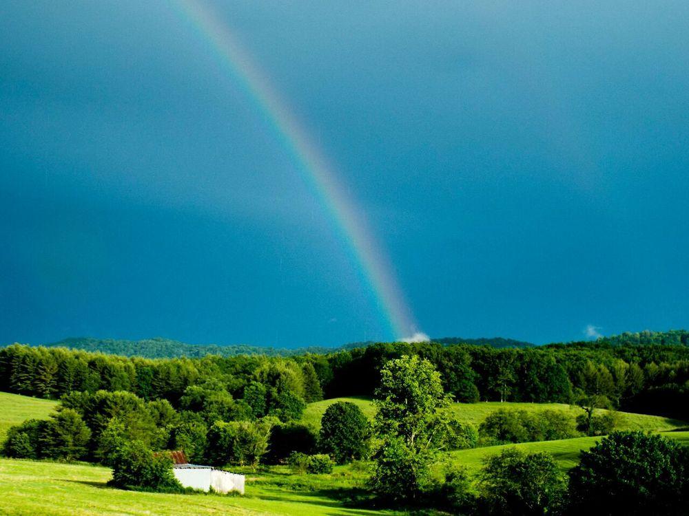 Rainbow_80_.jpeg