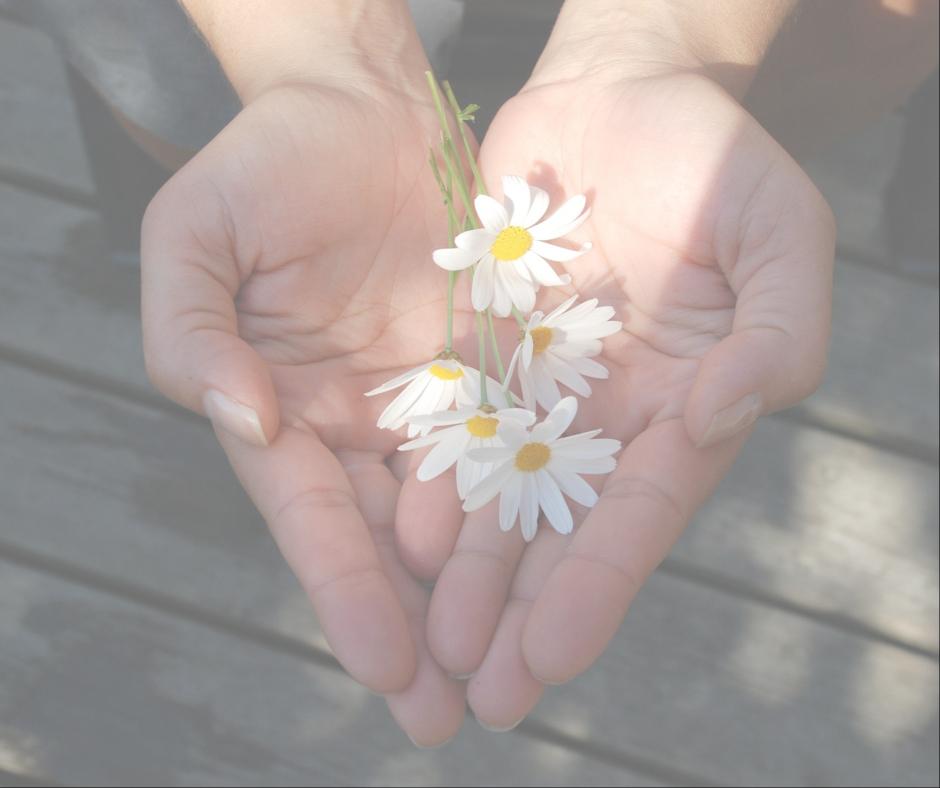 give back (1).jpg