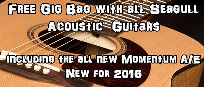 Seagull Guitars Free bags