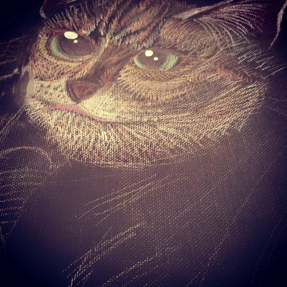 4. Using color pencil to draw fur by fur, one cat at a time. Trick is to using the same angle to follow the direction of the fur.