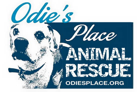 Odie's Place Animal Shelter