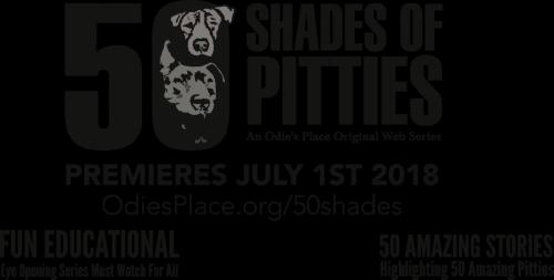 shades_final.png