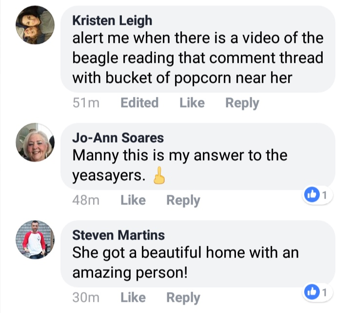 "April 21st On same Facebook post Former Ward 2 Councilor and good friend of Linda Morad Steven Martins claims dog found ""beautiful home"""