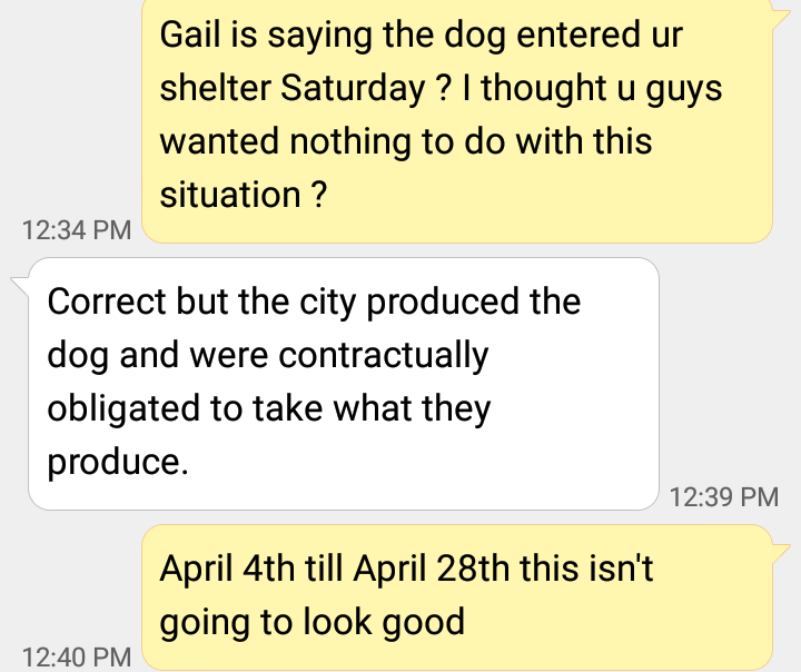 "April 28th , Despite calling this situation a ""disaster"" and week after Maciel announced Shya in a good home , Forever Paws gets ""involved"" according to Manager Casey Fredette . Dog has a new alias ""Chicklet"" Third name in a month."