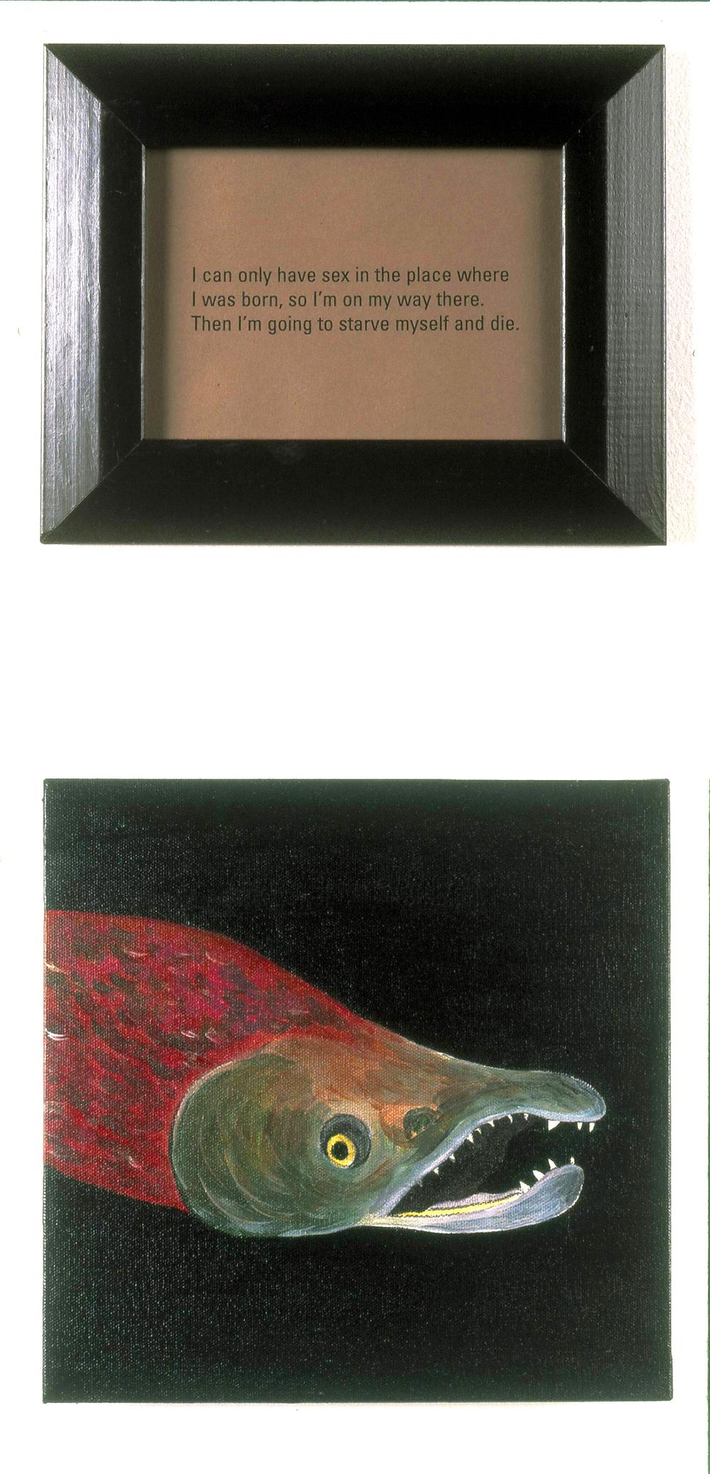 Sex Lives of Animals: Salmon, 1995
