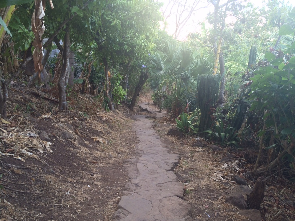 Ometepe Zopilote trail.JPG