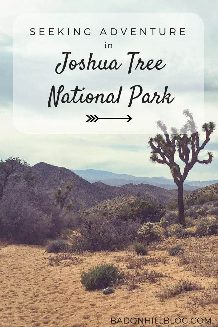 Seeking Adventure in Joshua Tree National Park by the Badon Hill Blog