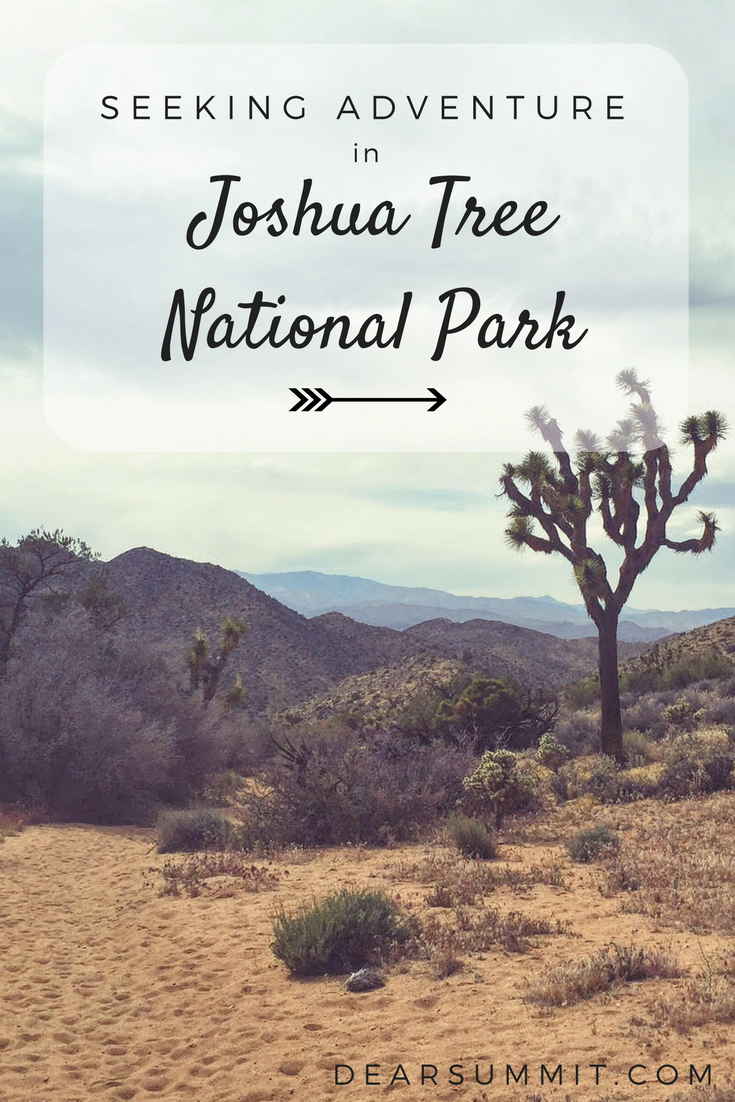 Seeking Adventure In Joshua Tree National Park Wind Rain