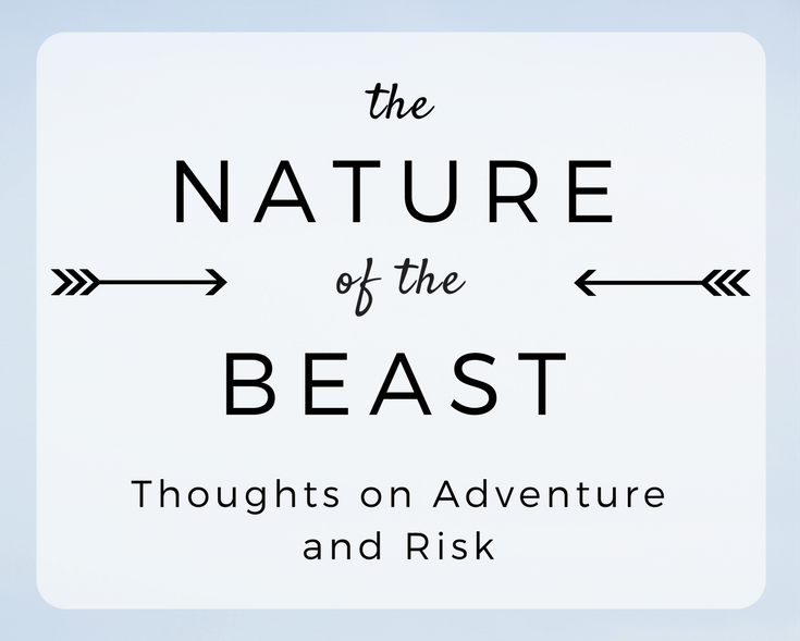 The Nature of the Beast: Thoughts on Adventure and Risk
