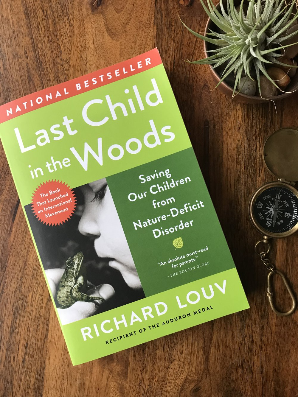 The Last Child in the Woods - a Nature-Loving Mama's Reading List from the Dear Summit Blog