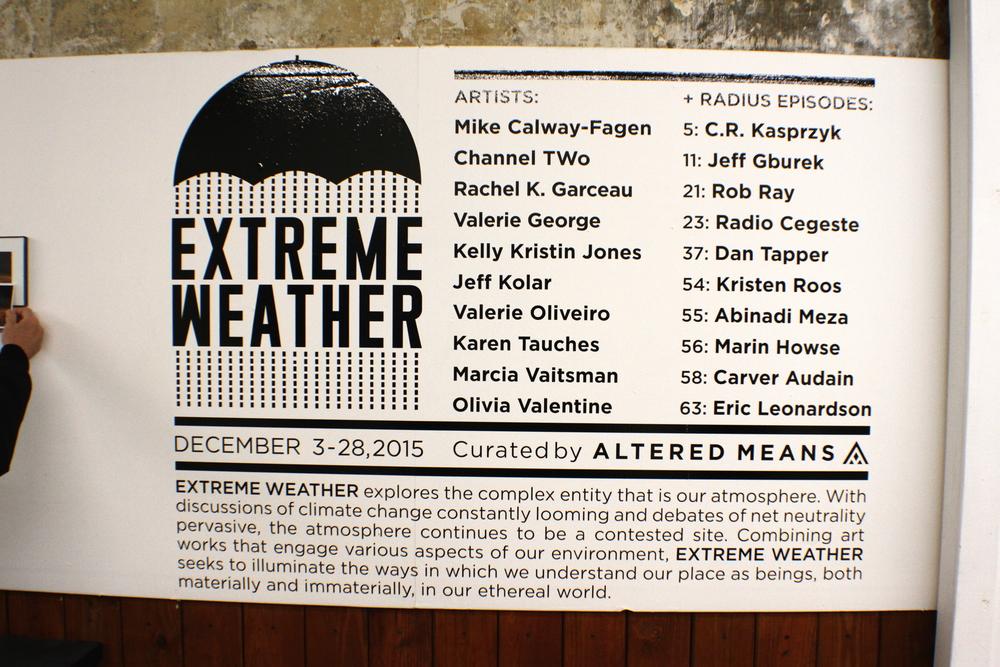 017 - MURMUR (Extreme Weather Opening) copy.JPG