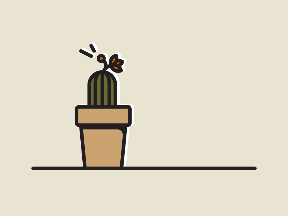 NoelleCampbell_Cacti