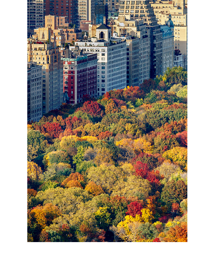 Our view from Central Park SOUTH