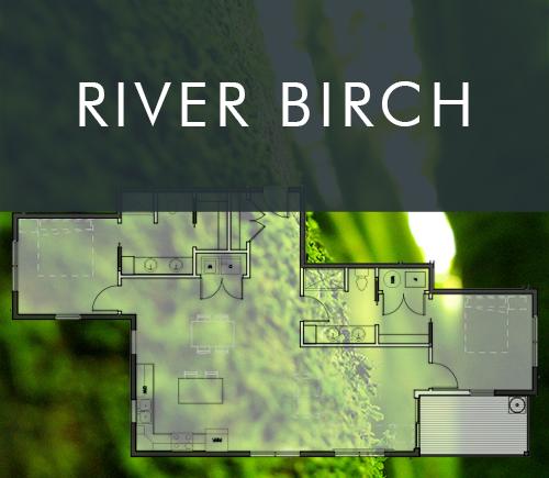riverbirch.jpg