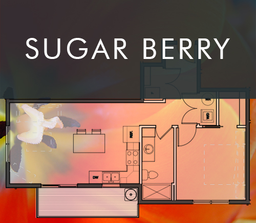 sugarberry.jpg