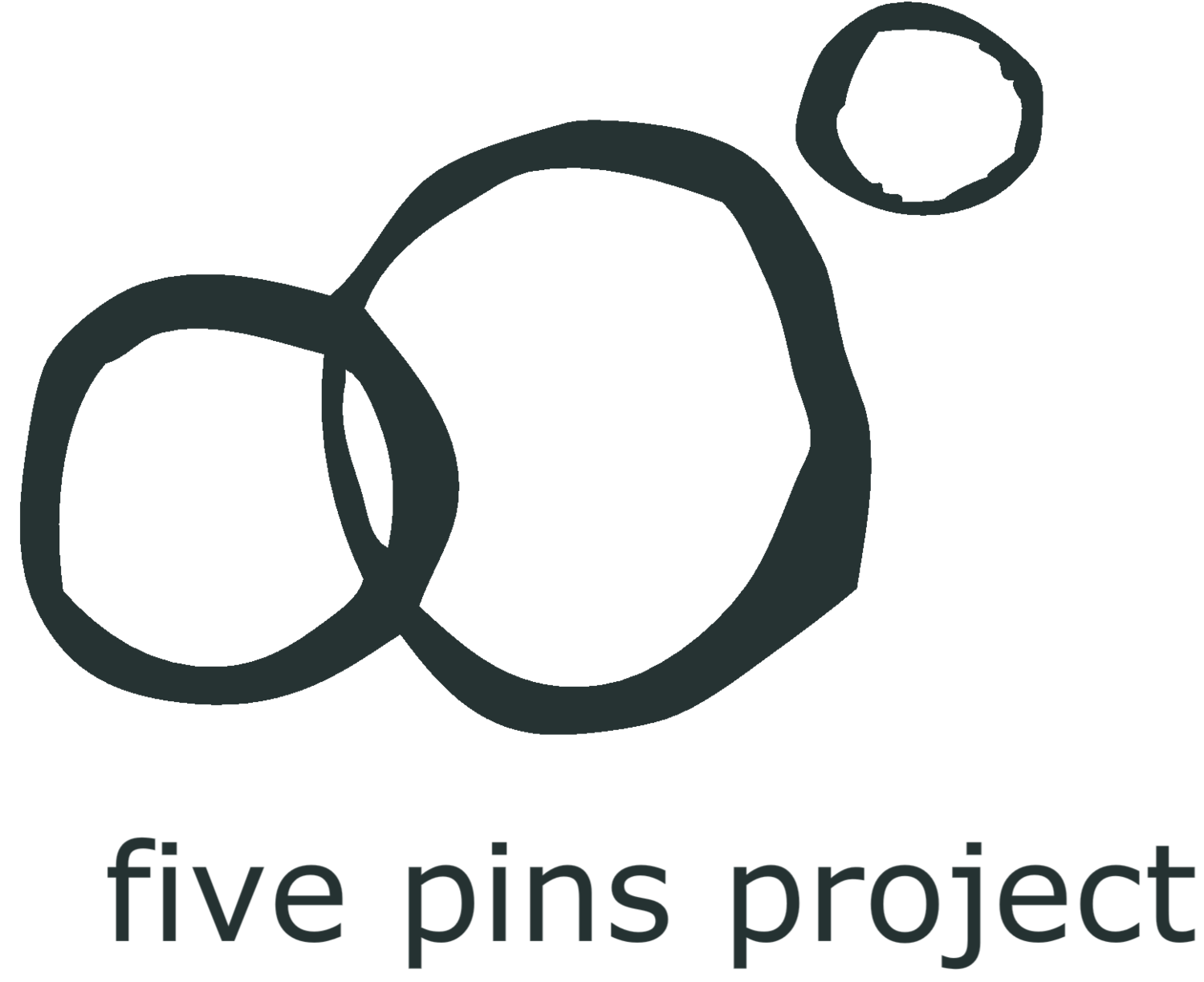 five pins project