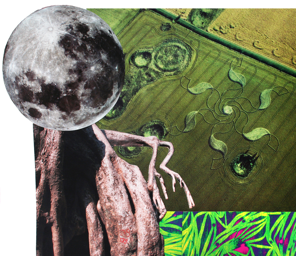 "Crop Circles, collage on paper, 14"" x 17"", 2009"