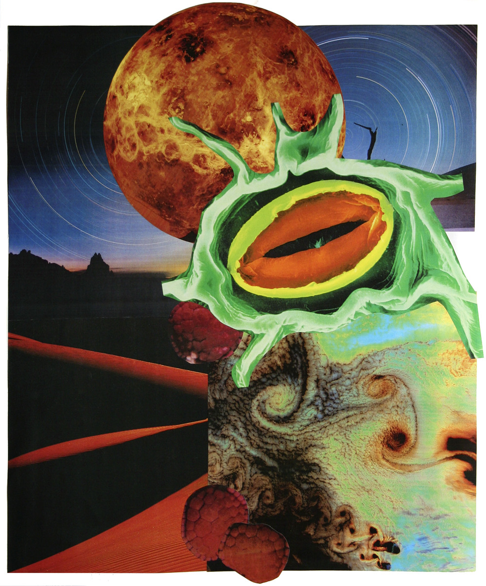 "Little Shop of Horrors, collage on paper, 14"" x 17"", 2007"