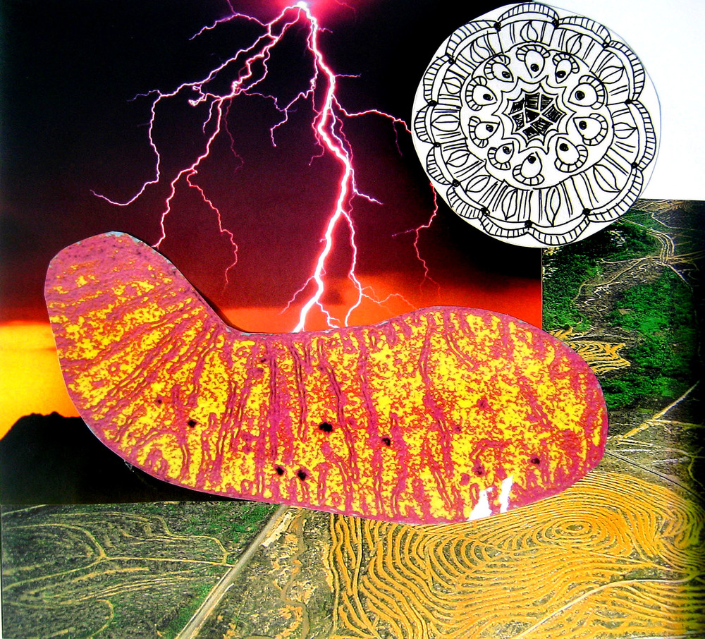"Lightning Bolt, collage on paper, 10"" x 11.5"", 2008"