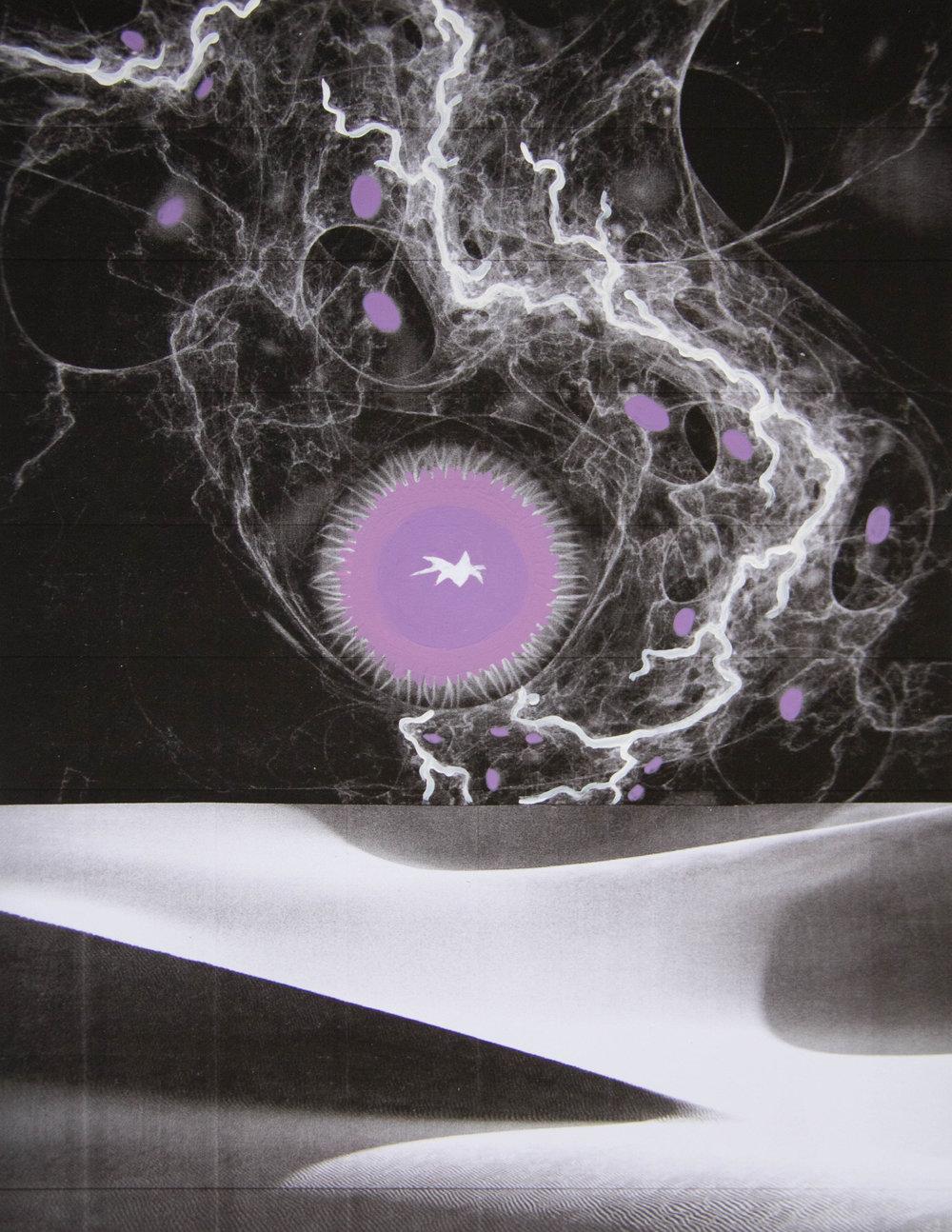 Apparition-Purple.jpg